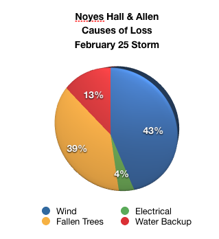 pie chart of claims reported to Noyes Hall & Allen Insurance