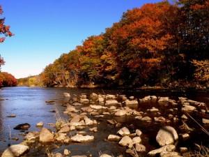 fall lake scene in Auburn, ME